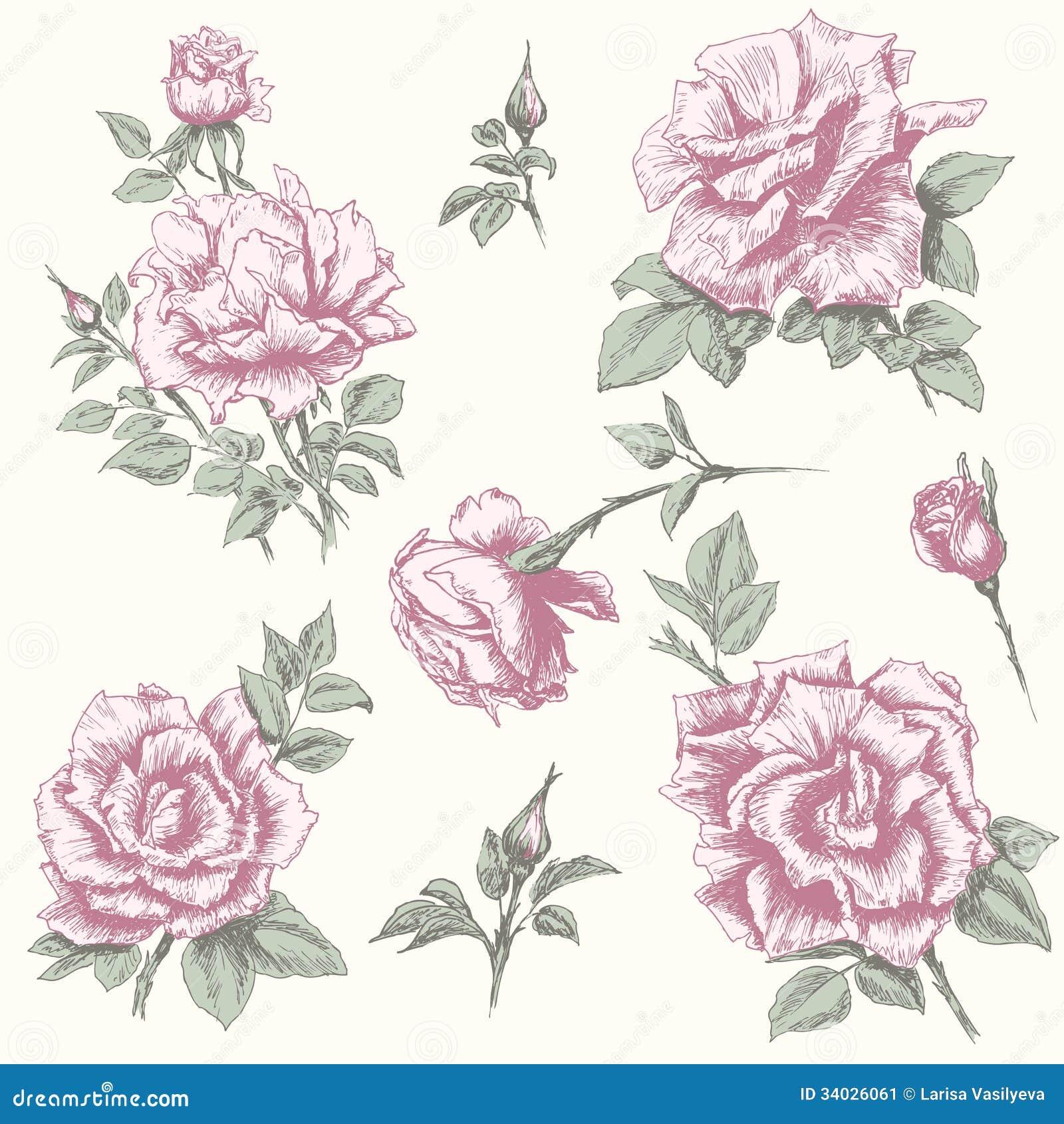 Vintage Rose Collectio...