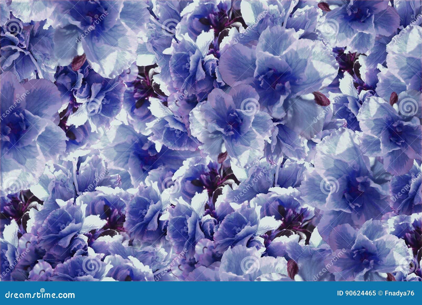 Vintage Roses Violet Blue Flowers Flowers Background Floral