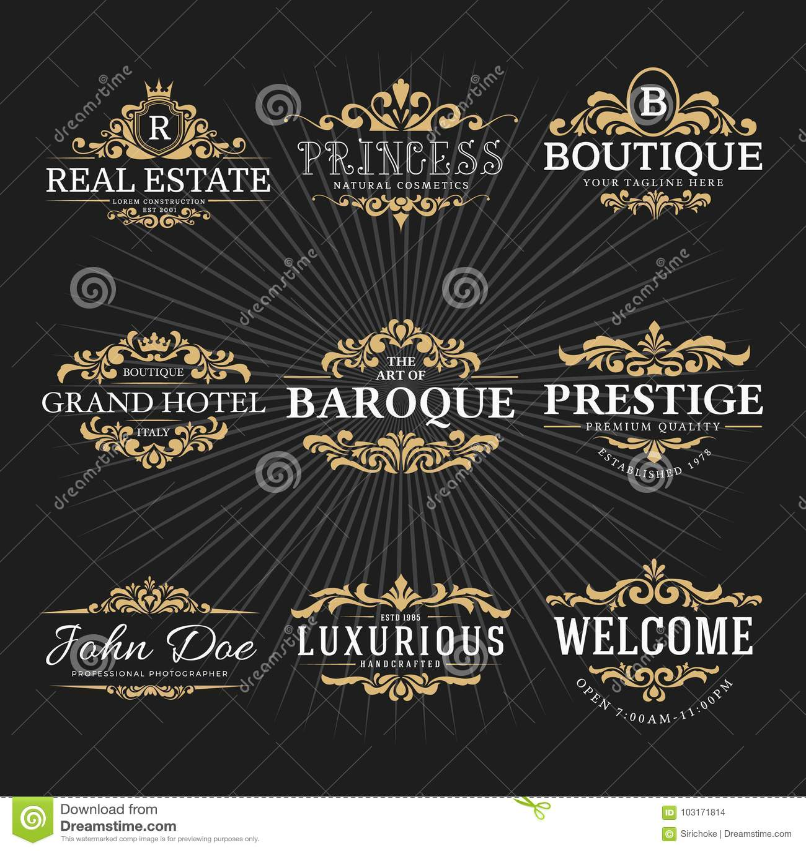 Vintage Royal Flourish Frame Logo Decorative Design