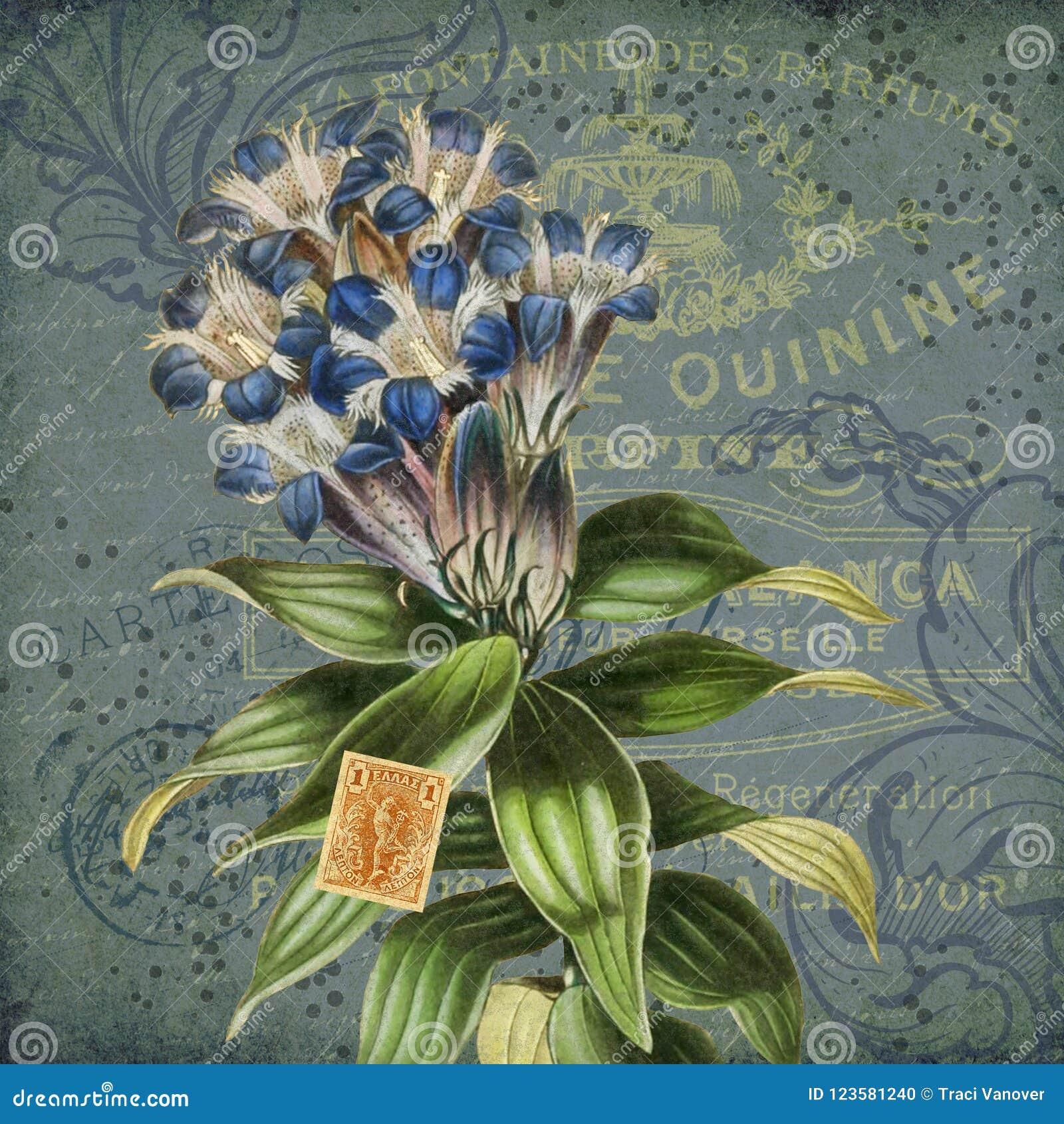 Vintage Floral Collage Illustration - Antique Style Collage
