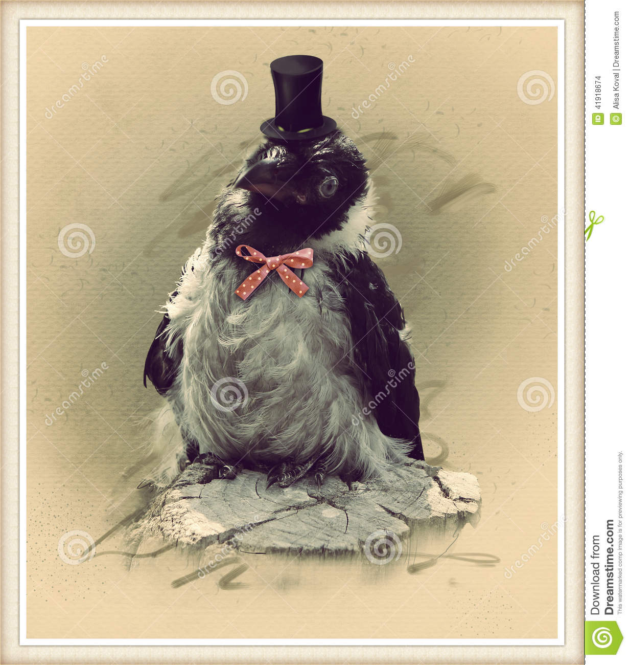 Vintage Style Photo Of The Funny Crow Stock Photo Image Of Dressed