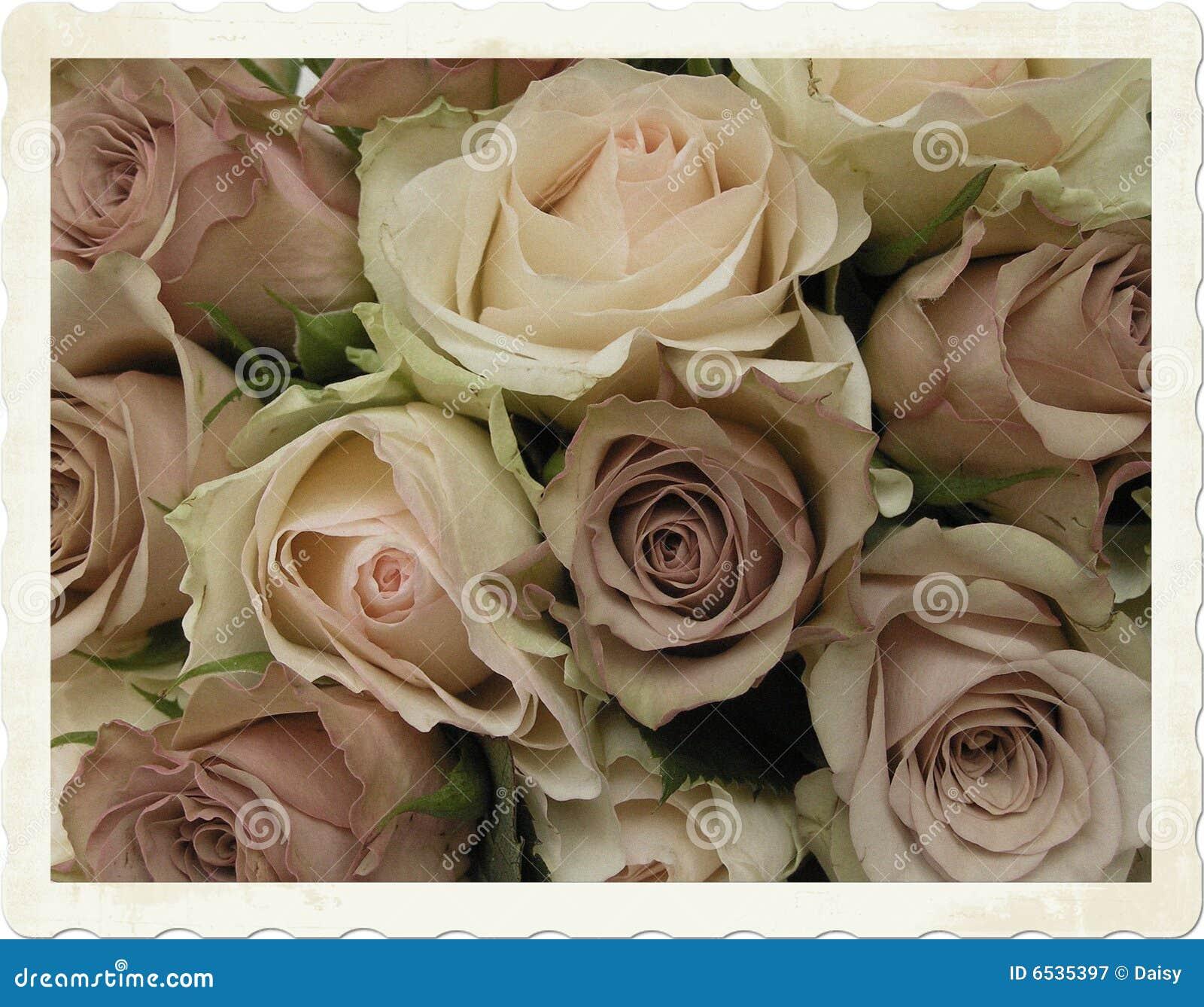 Vintage Wedding Bouquet Stock Image. Image Of Color