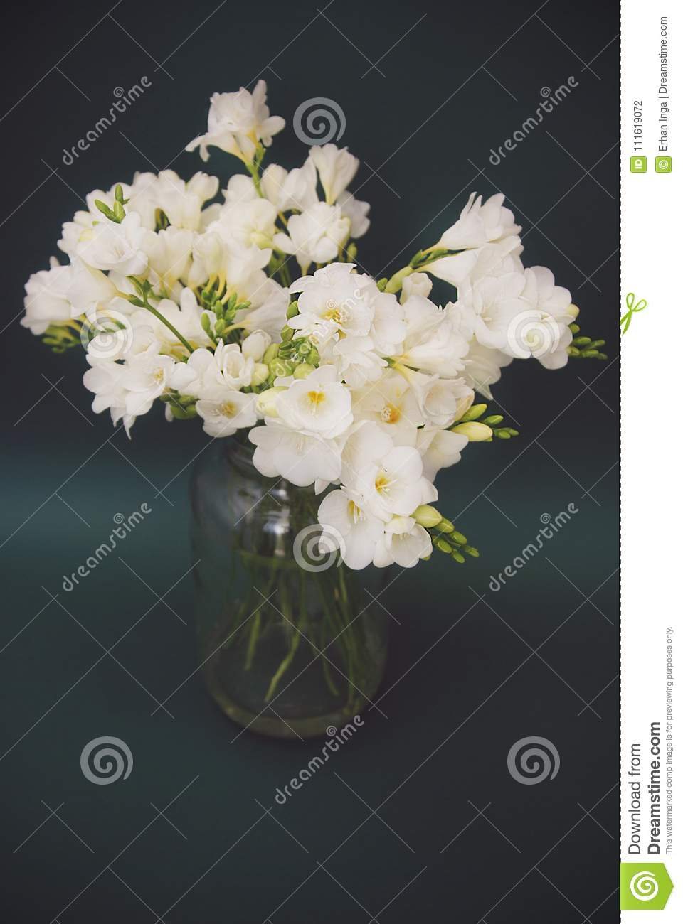 Vintage White Freesia Bouquet of Flowers in Glass Vase on Black Background. close up.