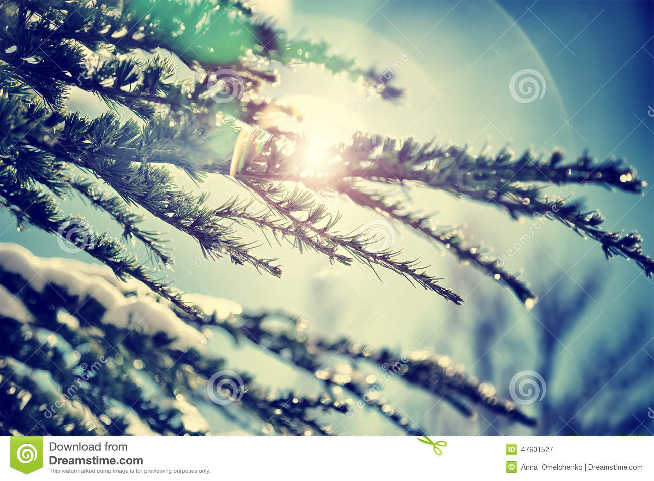 vintage winter background stock image image of outdoor