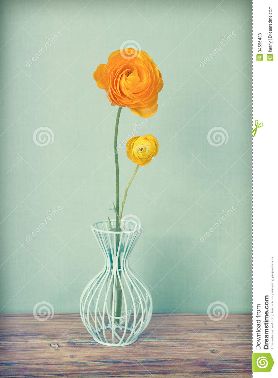 Vintage yellow persian buttercups flowers stock photo image of vintage yellow persian buttercups flowers reviewsmspy