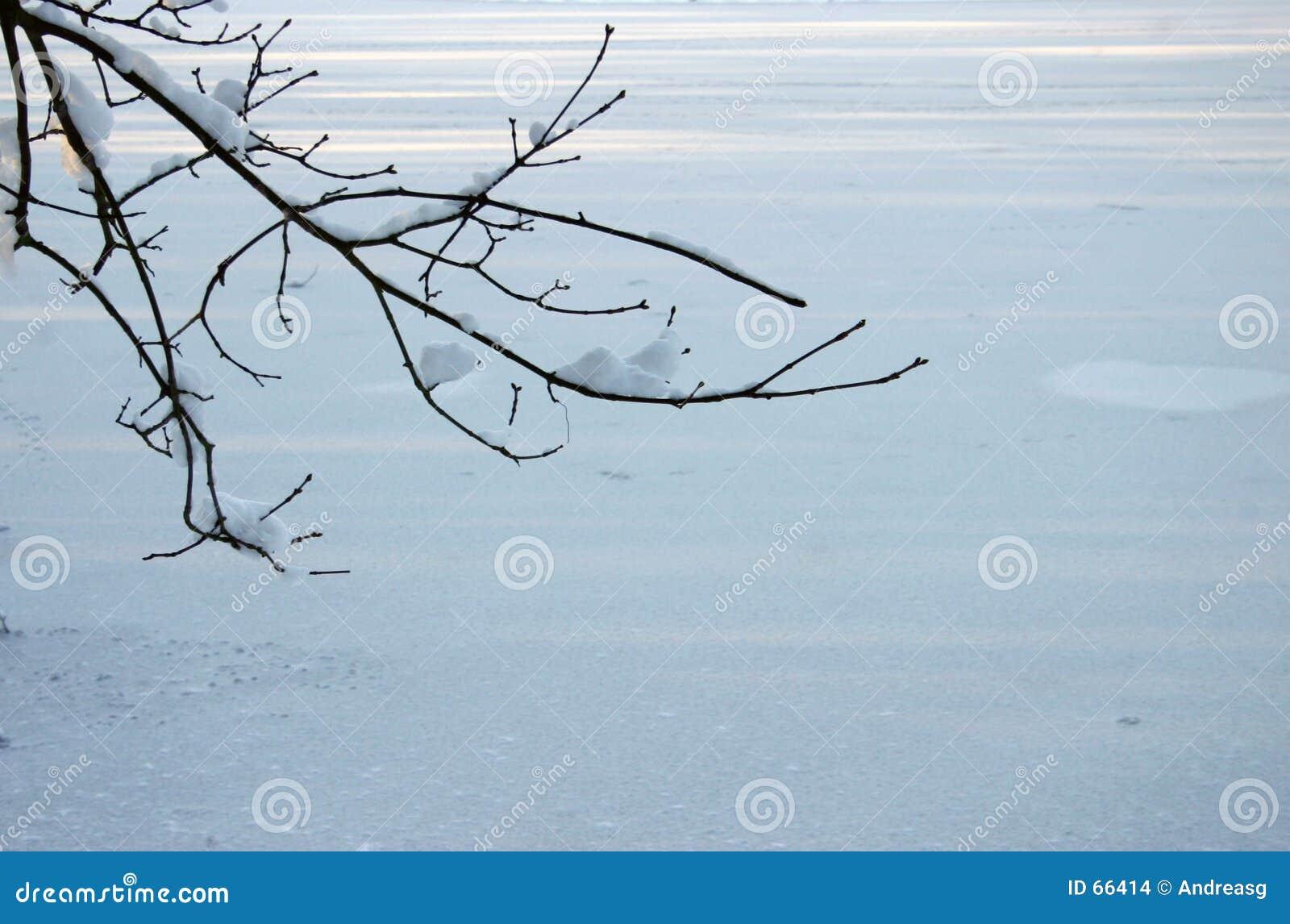 Vinter för 2 bakgrund