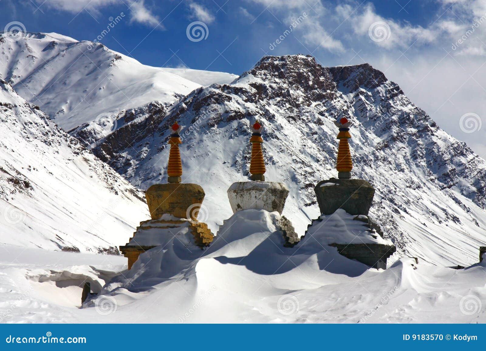 Vinter för himalaya stupastree
