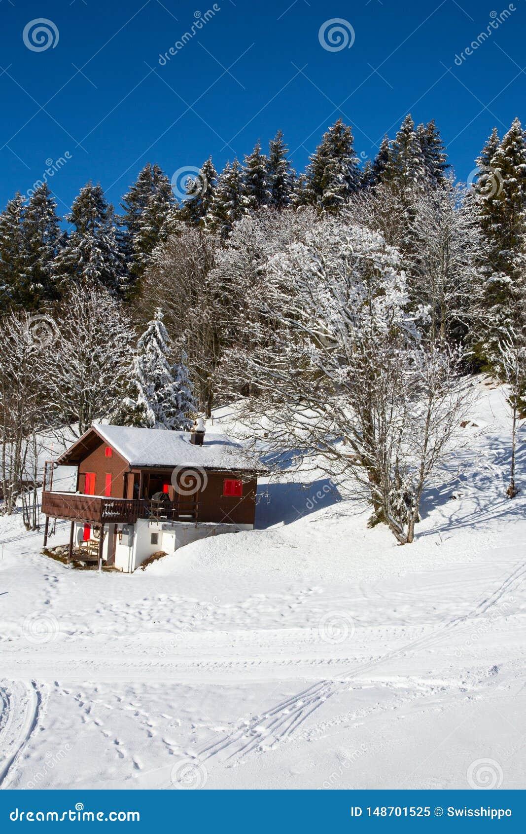 Vinter i alps