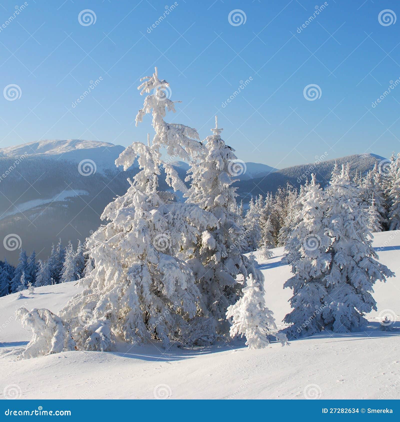 Vinter i berg