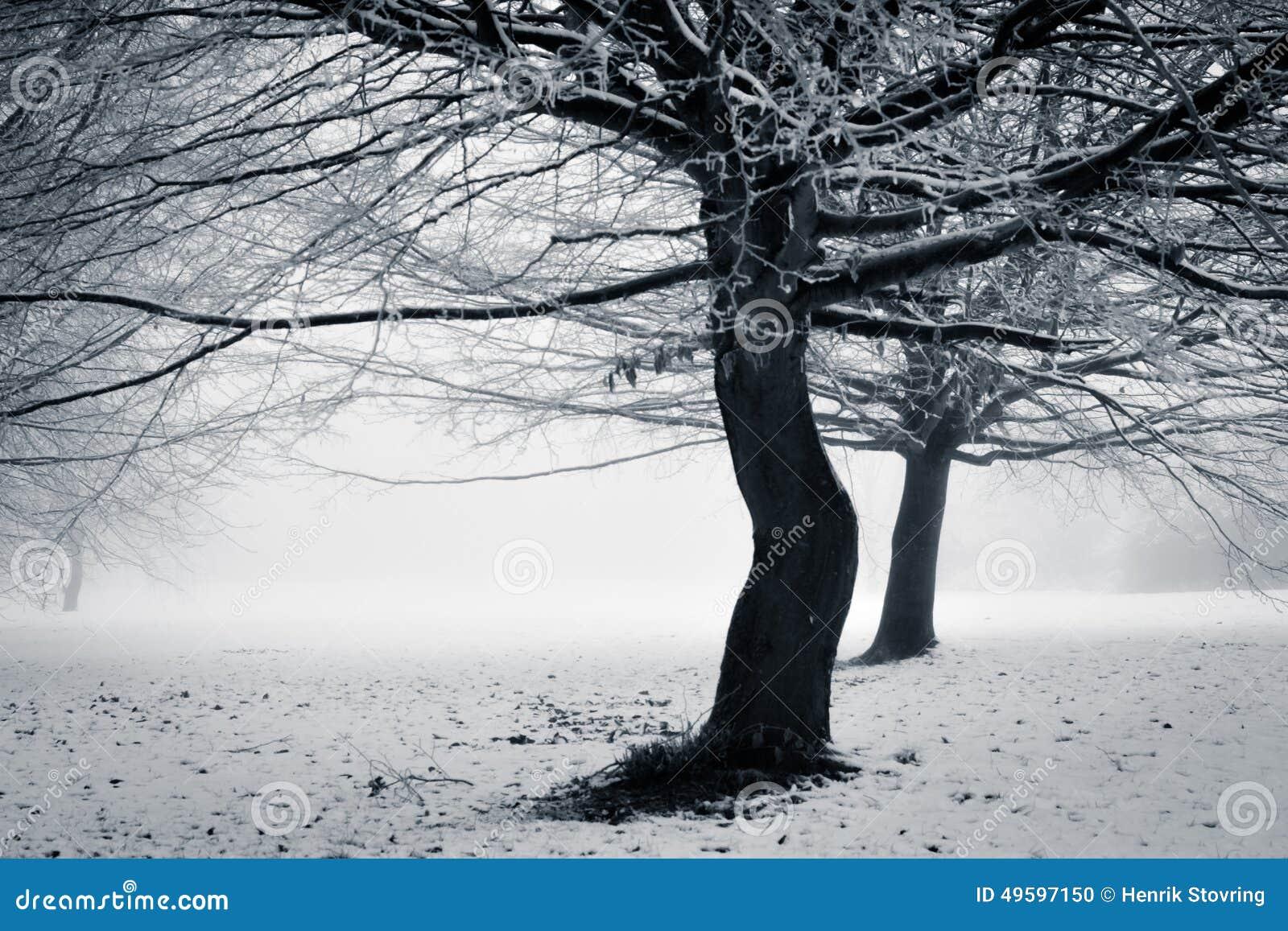 Vinter - med en vridning