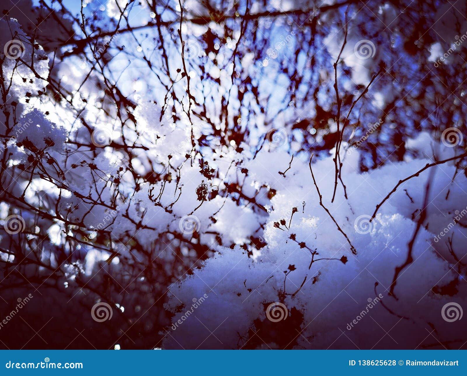 Vinterbakgrund eller ram