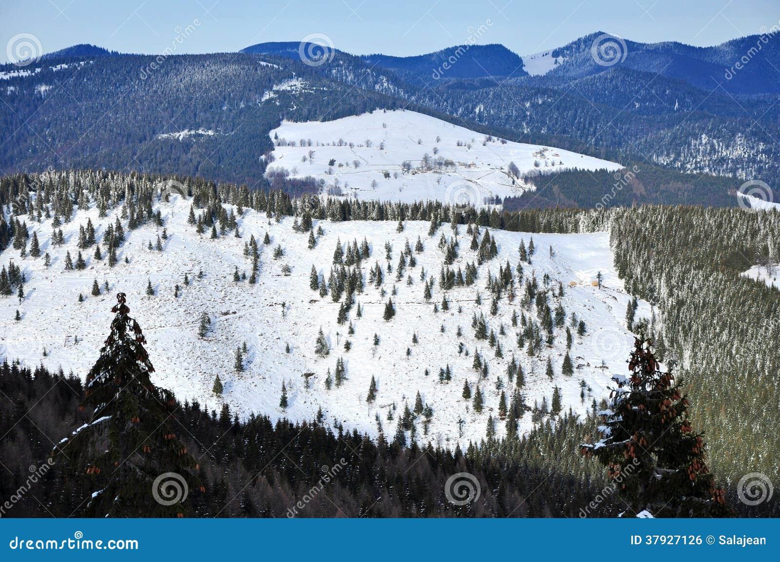 Vinterlandskap i bergen