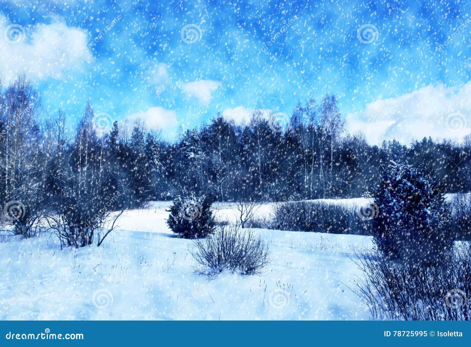Vinterlandskap i Lettland, Östeuropa