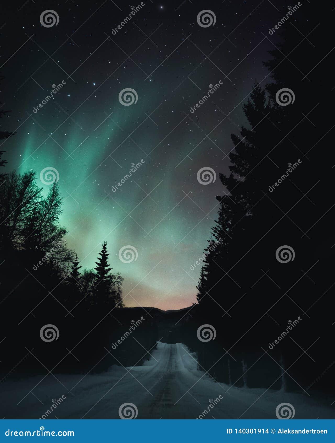 Vinternattväg med morgonrodnad
