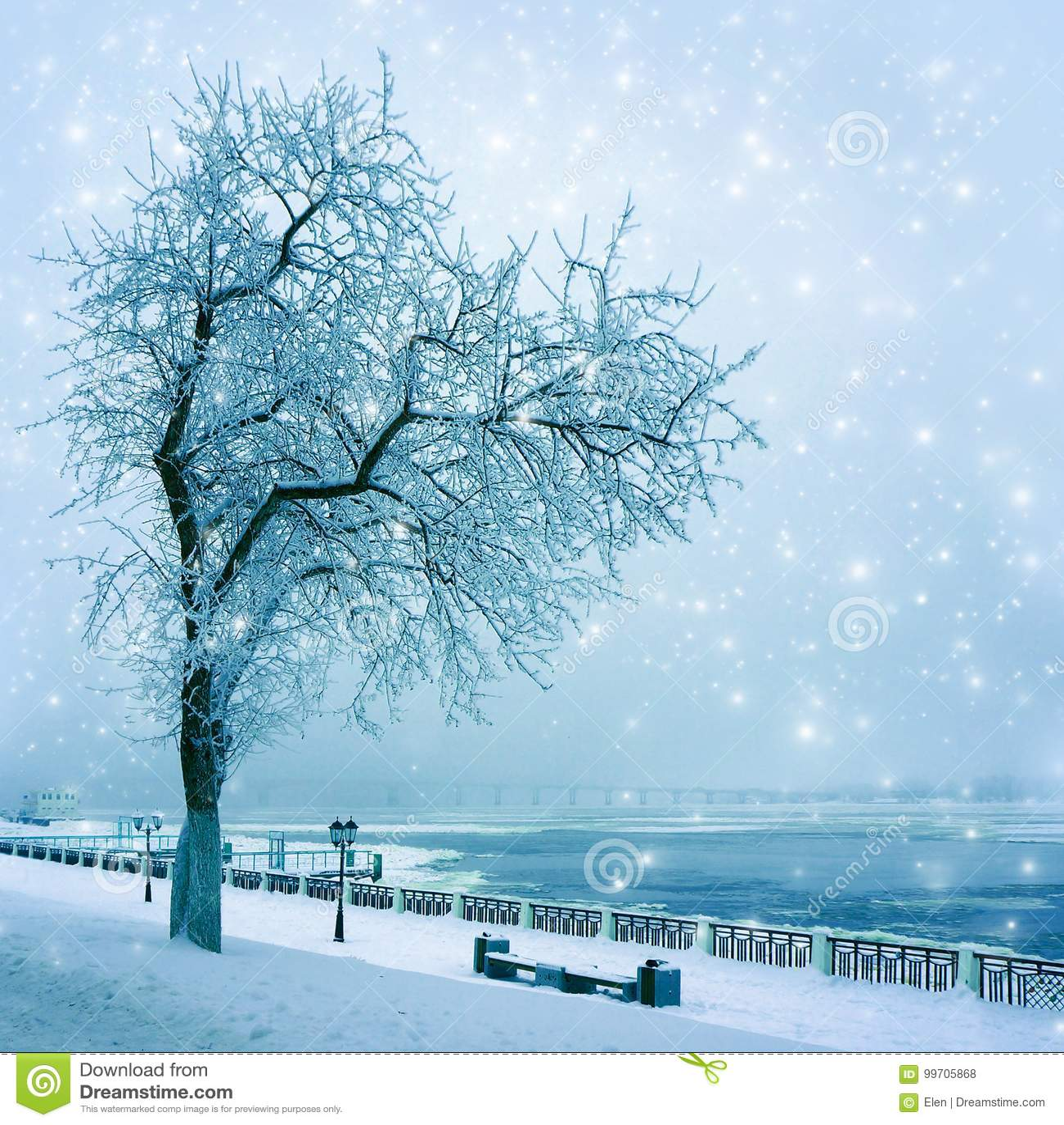 Vinternaturen, gränd parkerar in