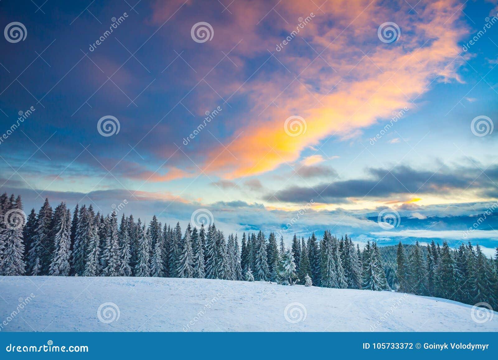 Vintersnölandskap i de Carpathians bergen ukraine