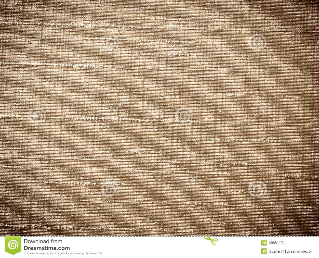 Vinyl wallpaper wall stock photo image 49881131 for Vinyl wallpaper for walls