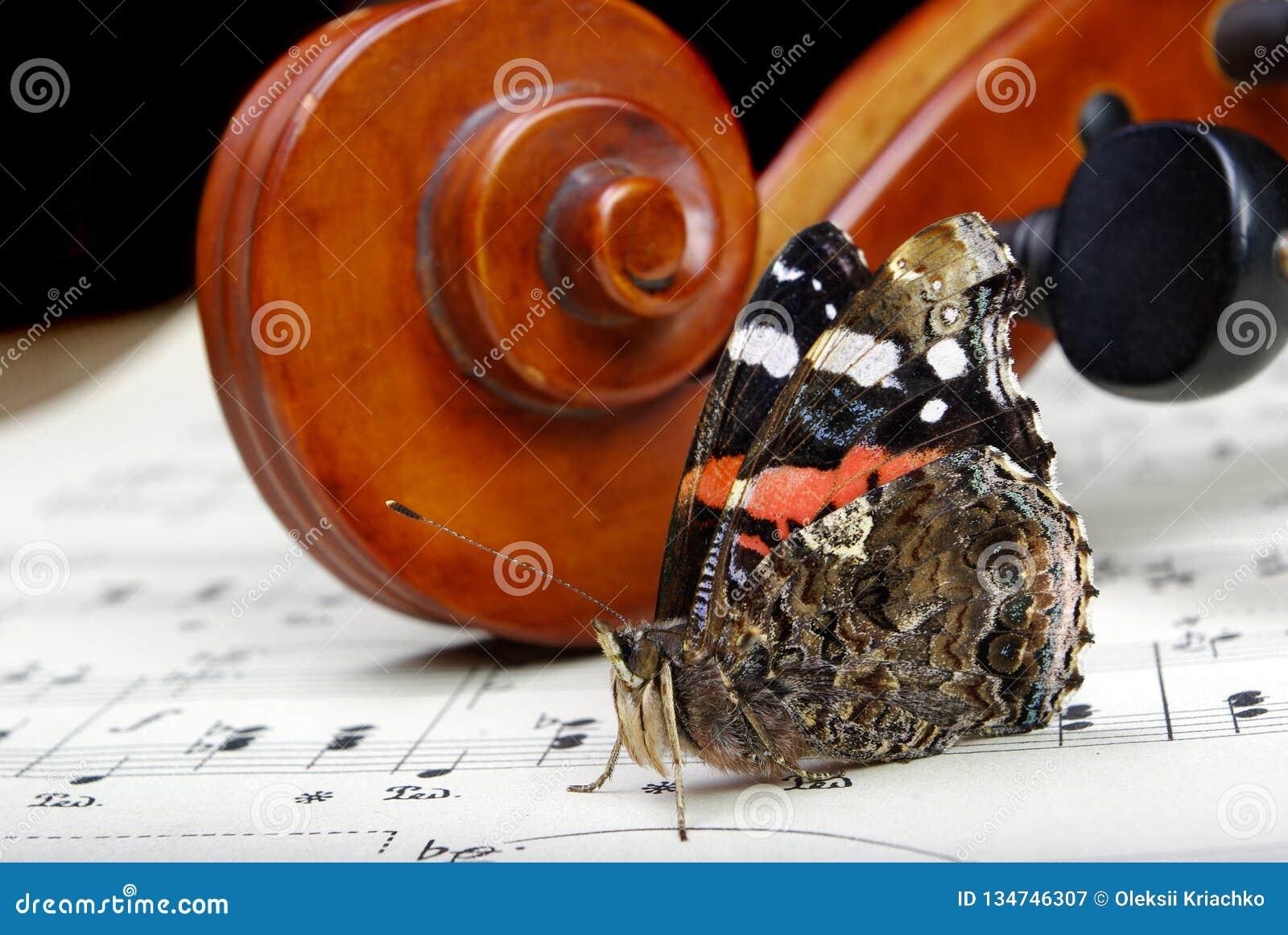 Violín y mariposa el cuello de un violín y las notas se cierran para arriba Almirante de la mariposa