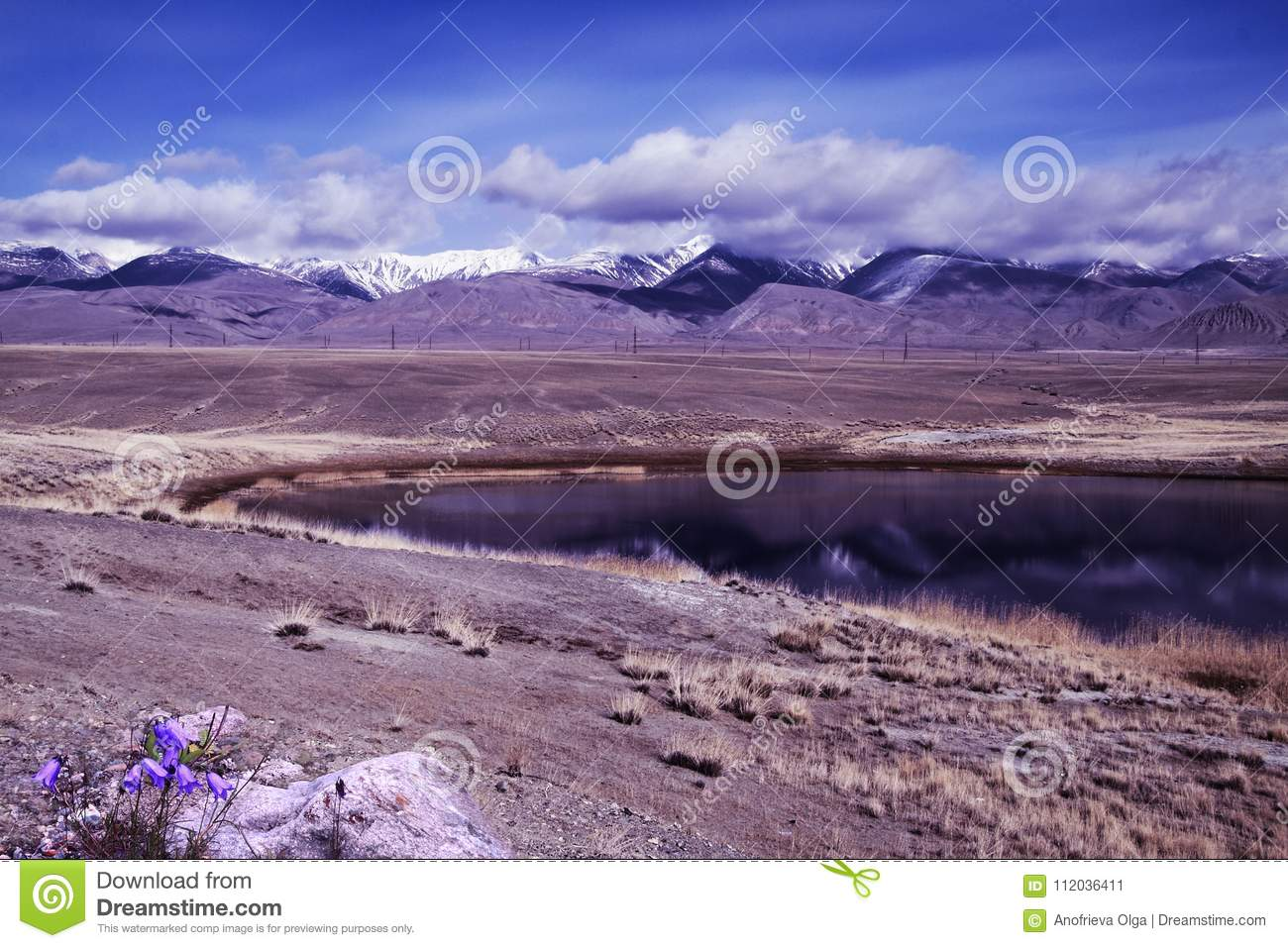 Violet handbells and lilac lake with reflection of mountain