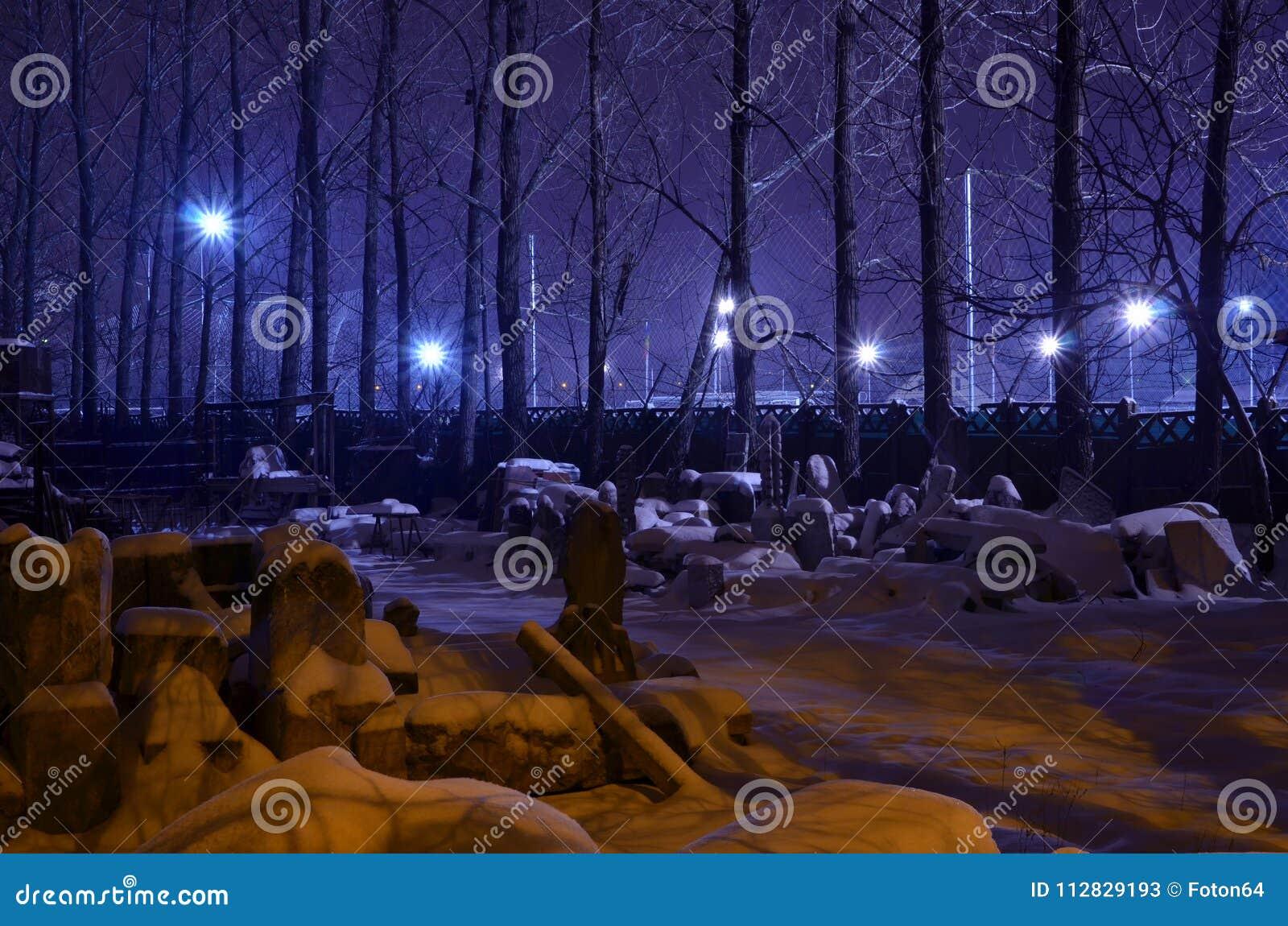Fantasy night winter scene in purple color