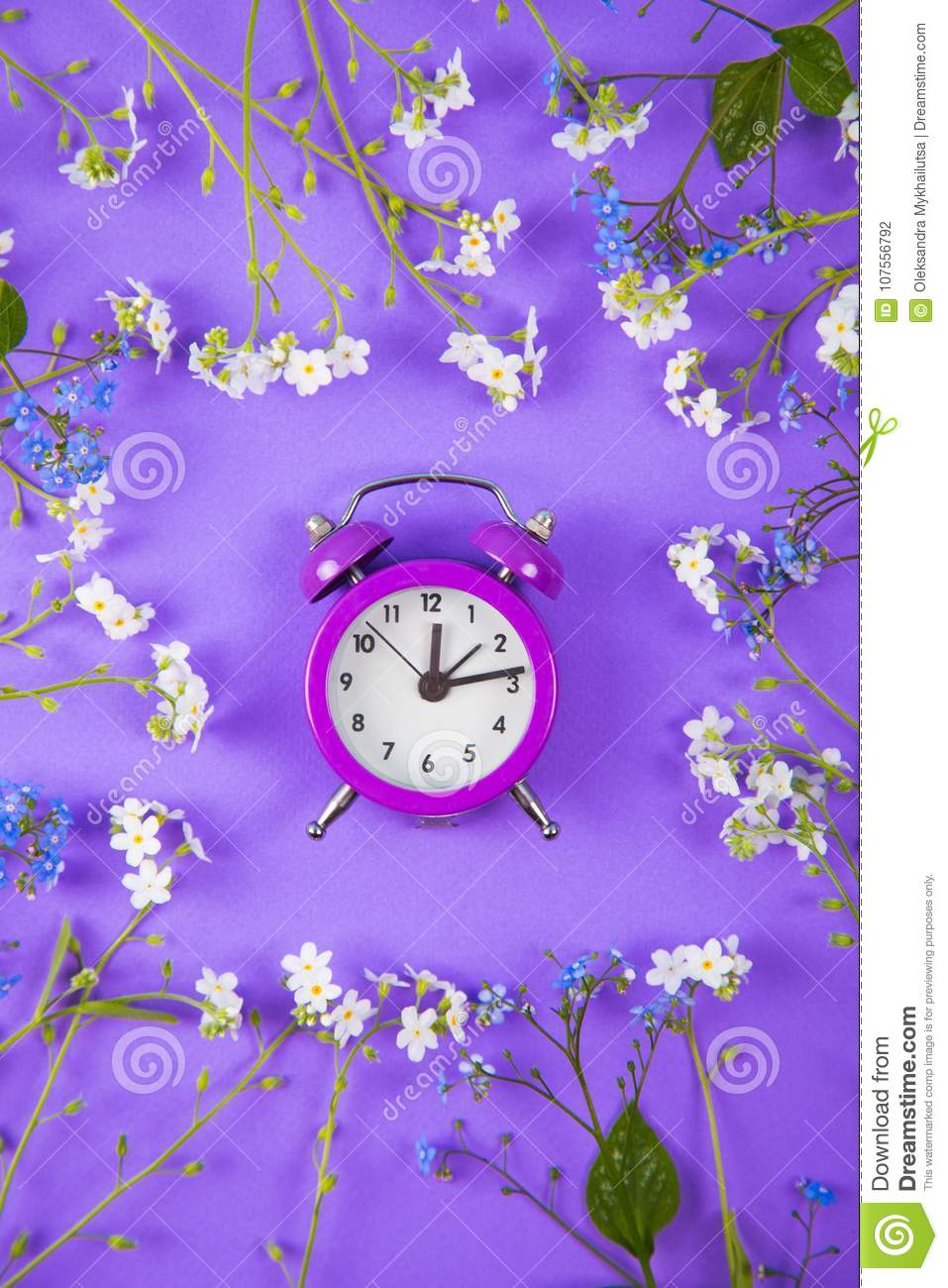 Violet Small Alarm Clock Surrounded With Blue And White Little Stock
