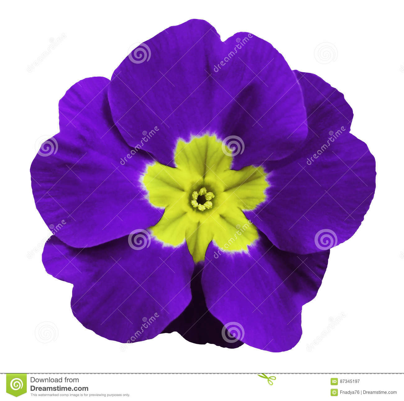 For council Violet blue nude photos sorry, does
