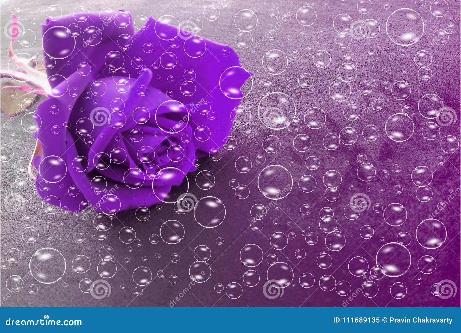 Violette Blumen mit Blasen und Veilchen schattierten strukturierten Hintergrund, Vektorillustration