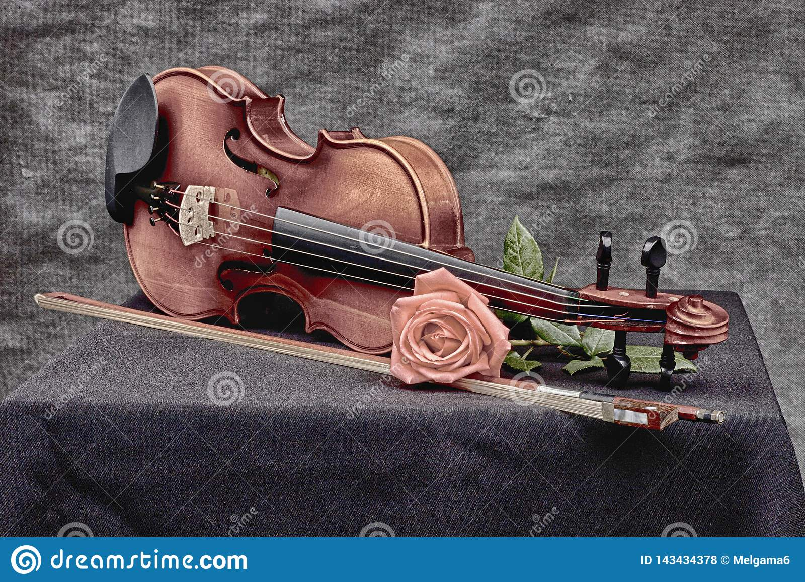 Violin in artistic mood
