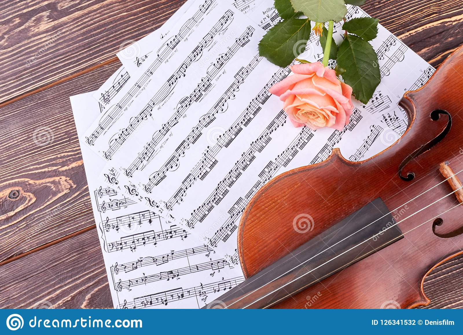 Violin, Delicate Rose And Musical Notes  Stock Photo - Image