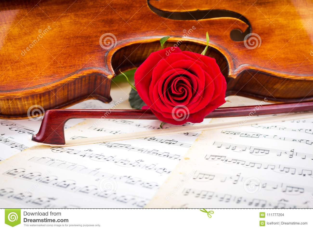 Violin detail, red rose and bow on sheet