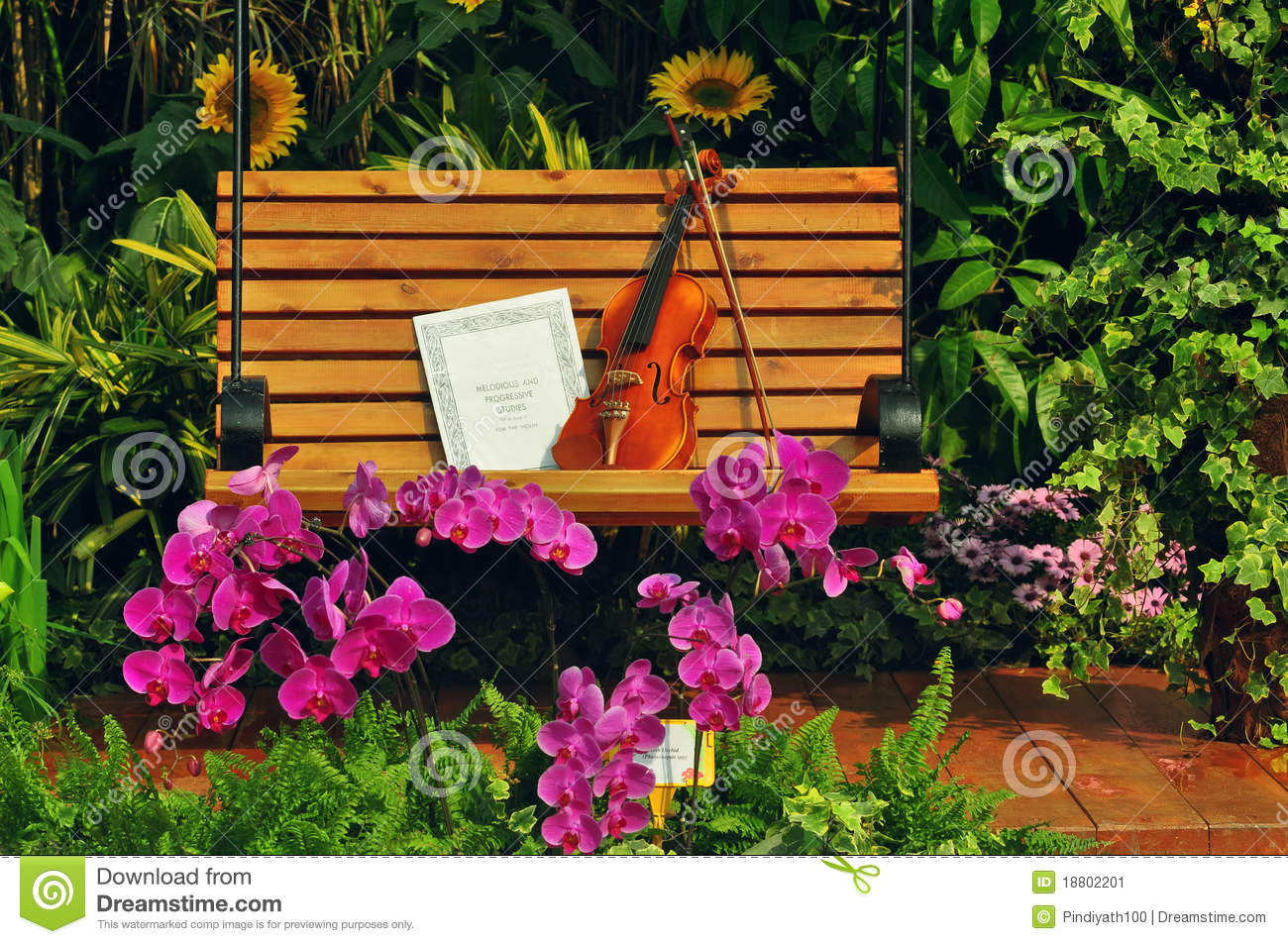 Violin And Musical Note On Bench Stock Image Image Of