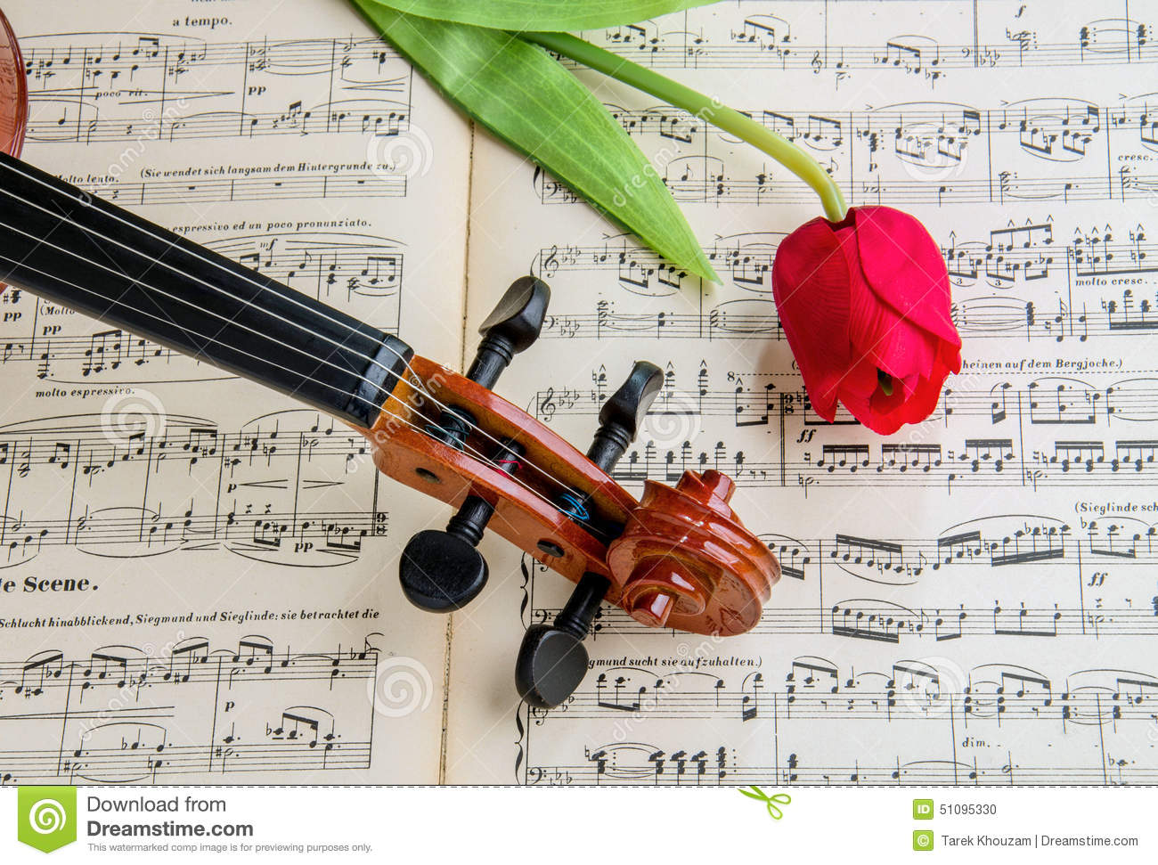 Violin And Tulip Stock Photo Image Of Paper Hear Flower 51095330