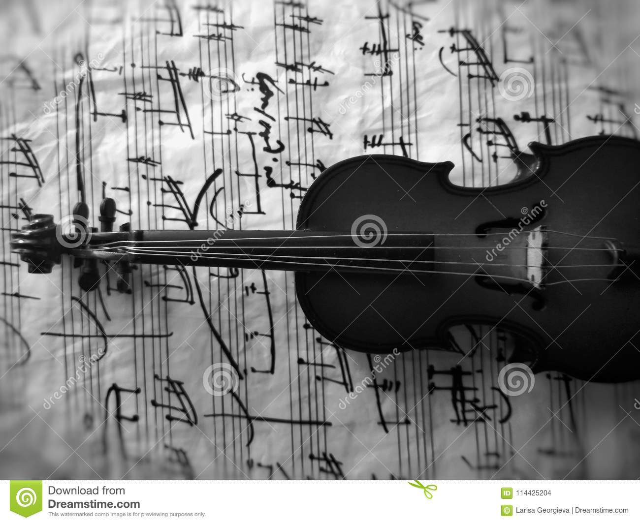 Violine stringed musical instrument