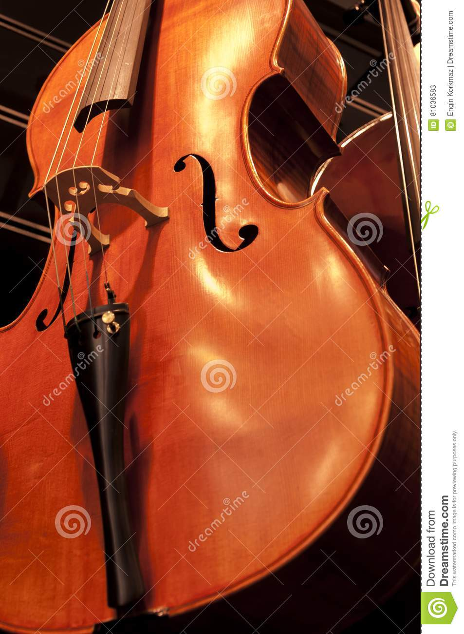 Violins on the wall stock image  Image of dark, color - 81036583