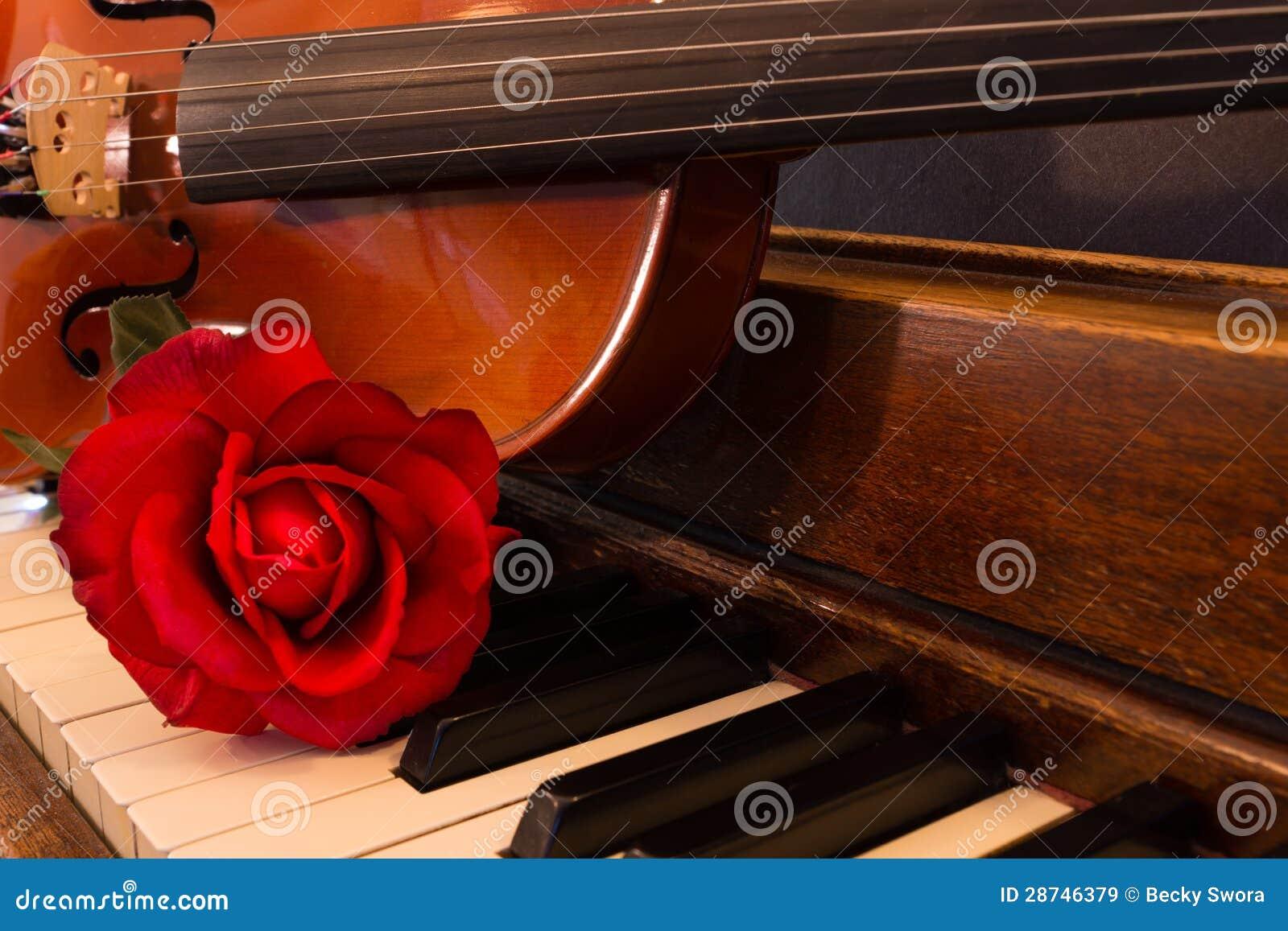 Violon, piano, et Rose