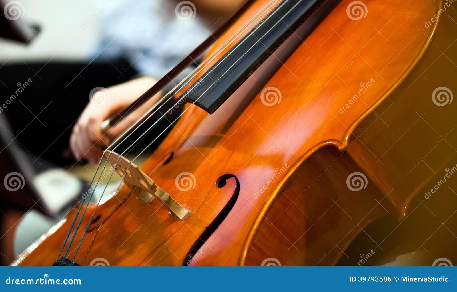 Violoncel