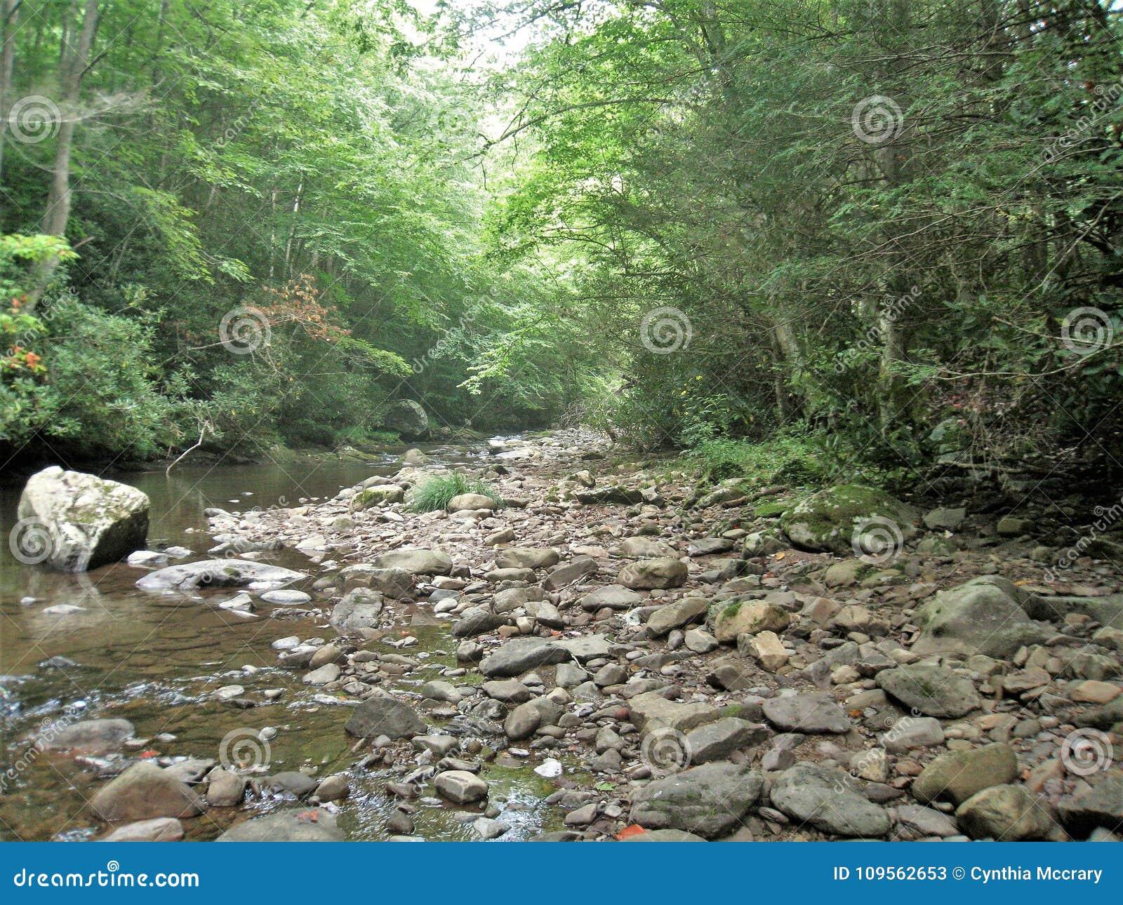 Virginia Creeper Trail under en torka