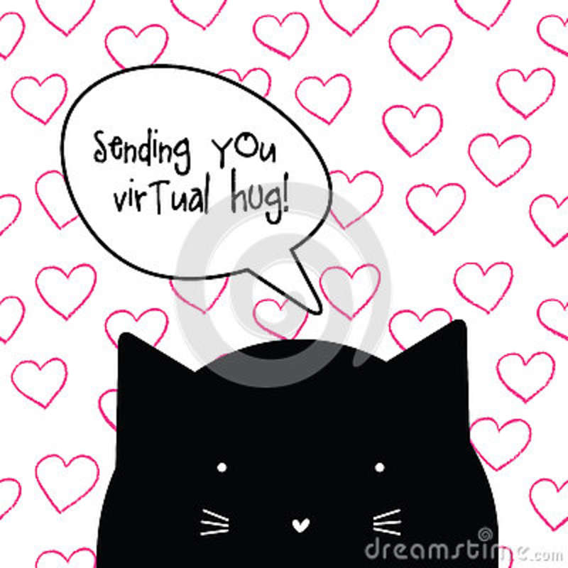 Virtual Hug. Romantic Love Quote Message From Cat