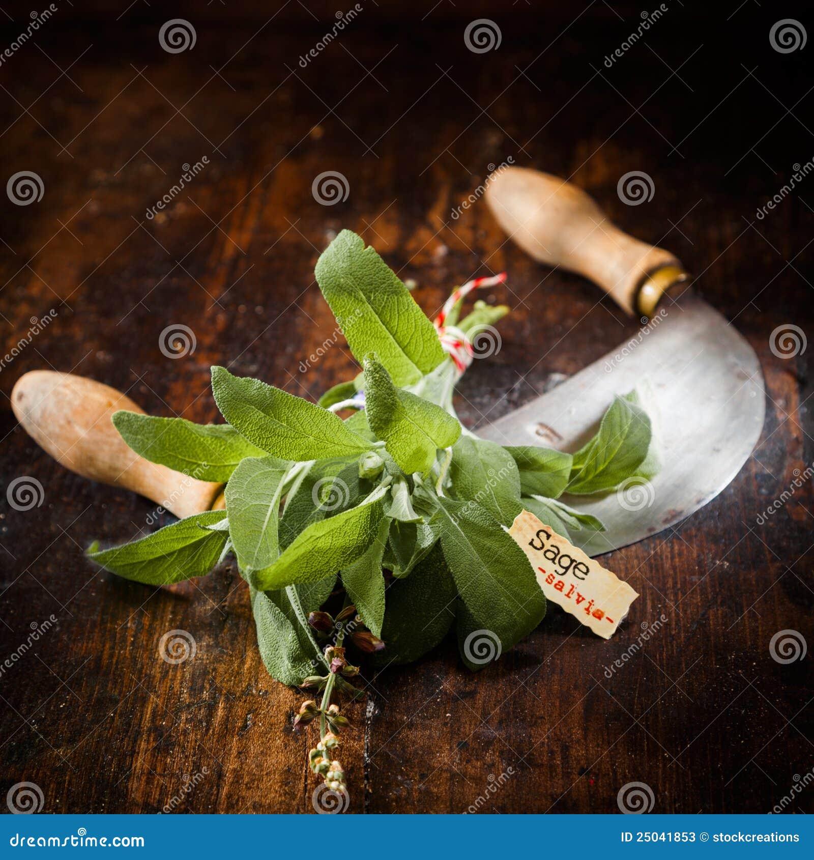 Vis hugga av kniv som märks