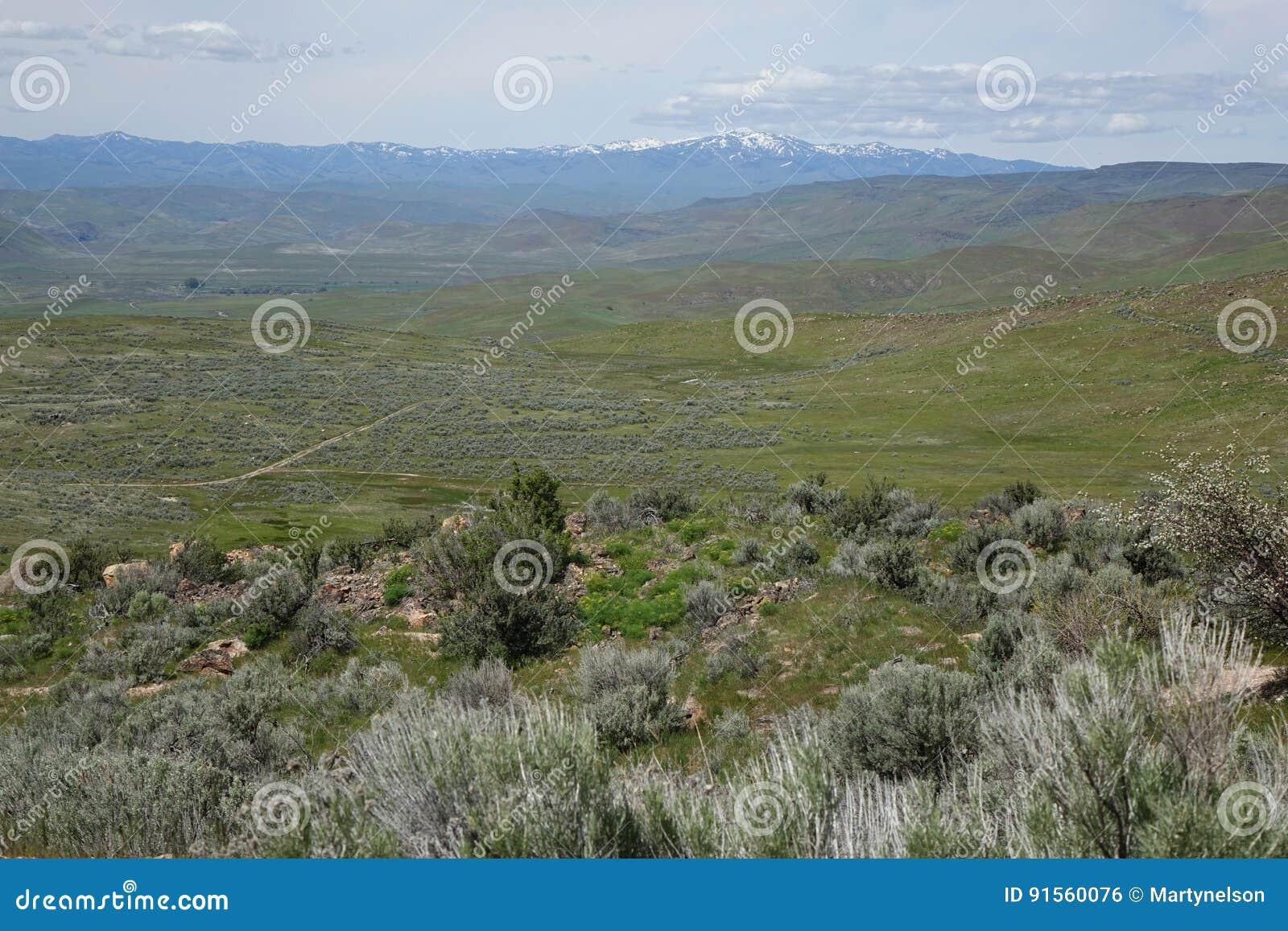 Visión desde Crane Creek, Idaho
