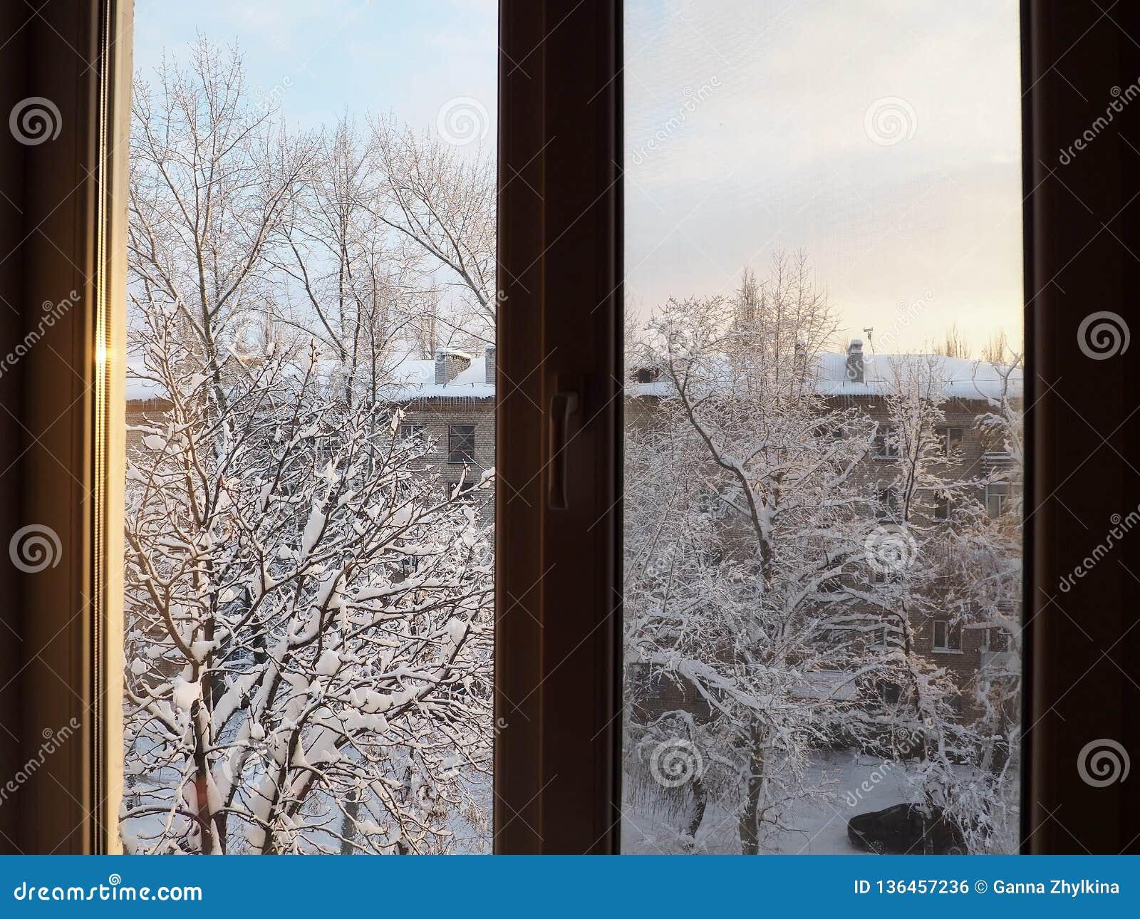 Visión desde la ventana en la yarda nevada
