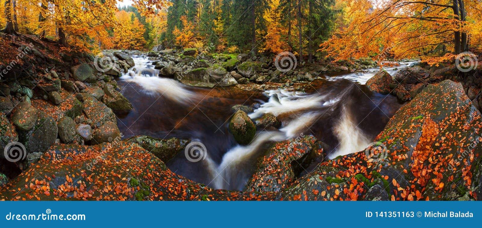 Visión en el río de la montaña del otoño con las ondas borrosas, las piedras cubiertas de musgo verdes frescas y los cantos rodad