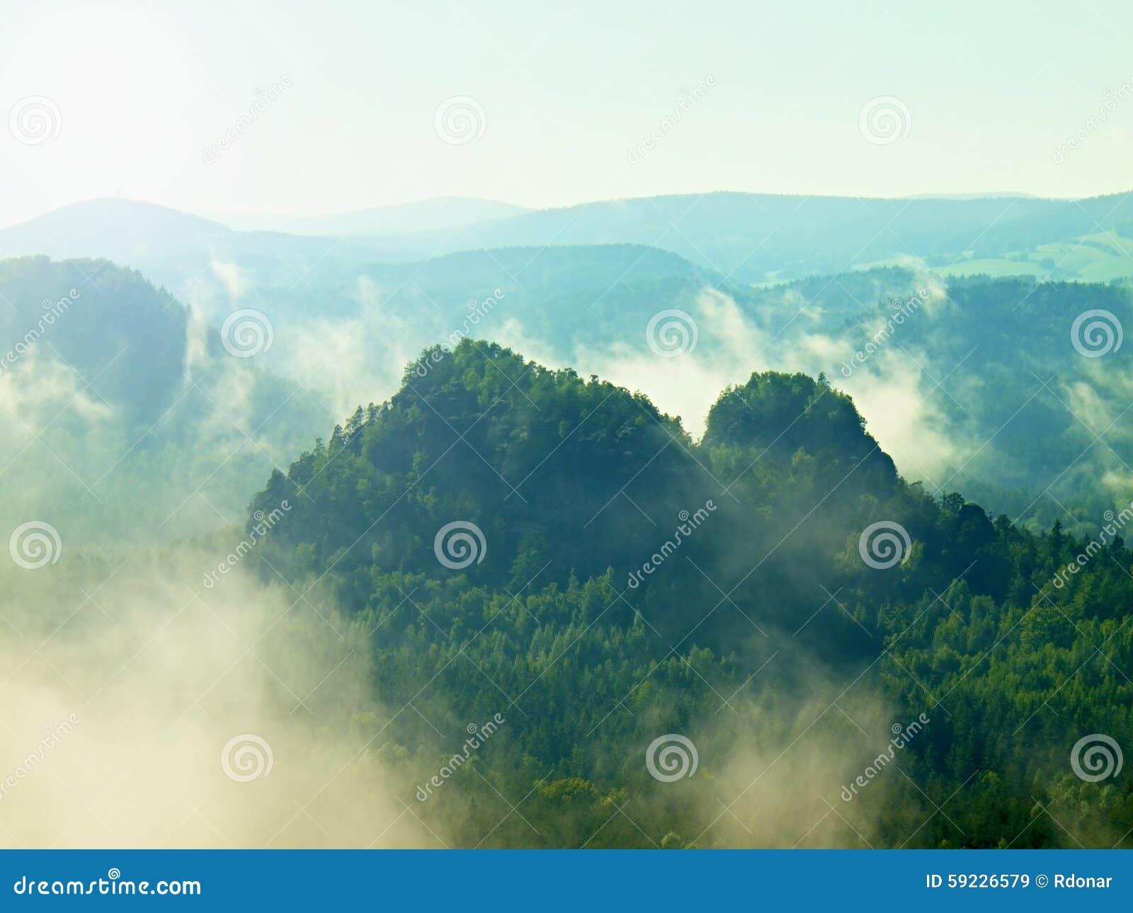 Visión en el valle brumoso profundo en Sajonia Suiza Picos de la piedra arenisca crecientes de la niebla colorida pesada