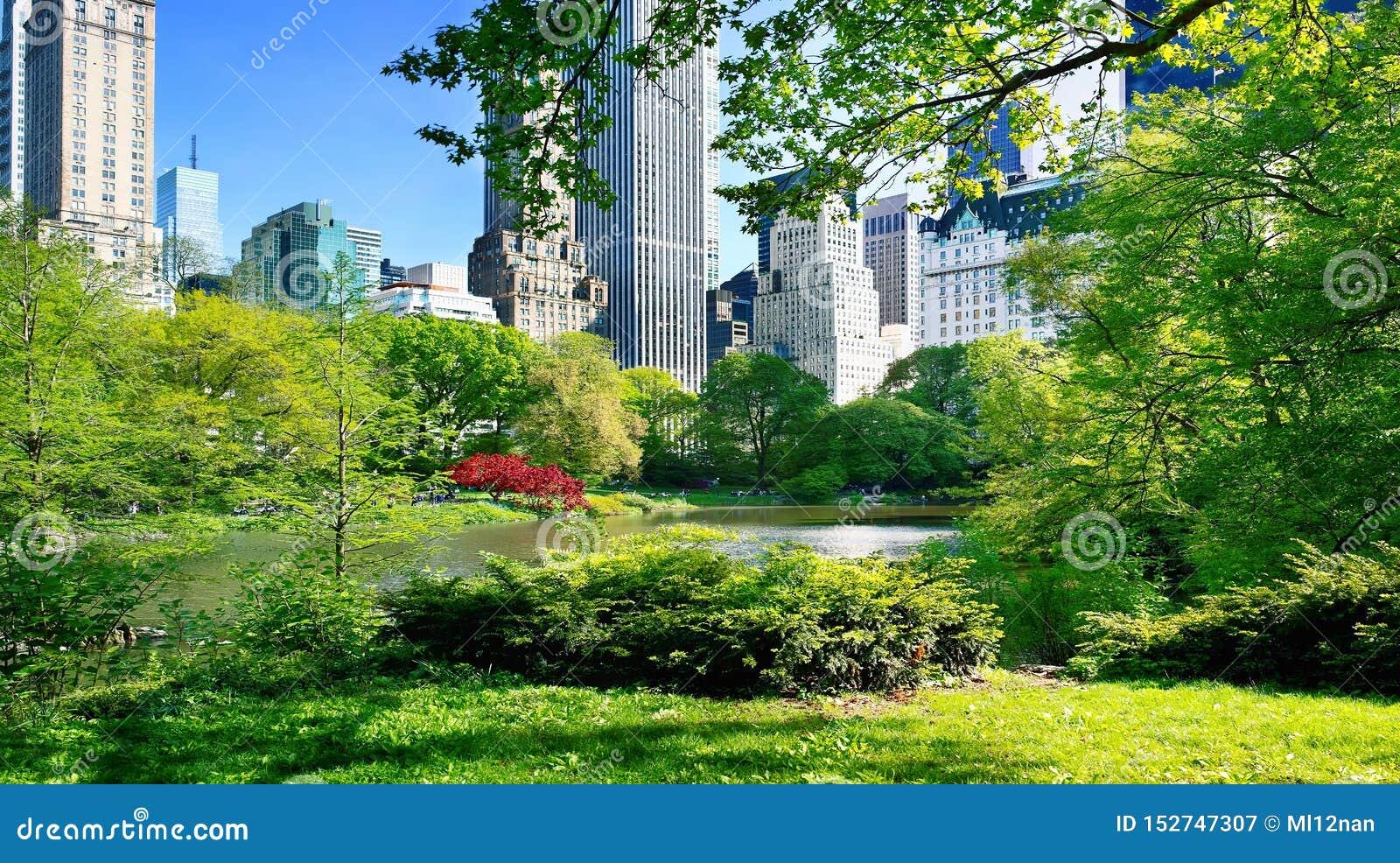 Visi?n desde el Central Park, Manhattan, NYC