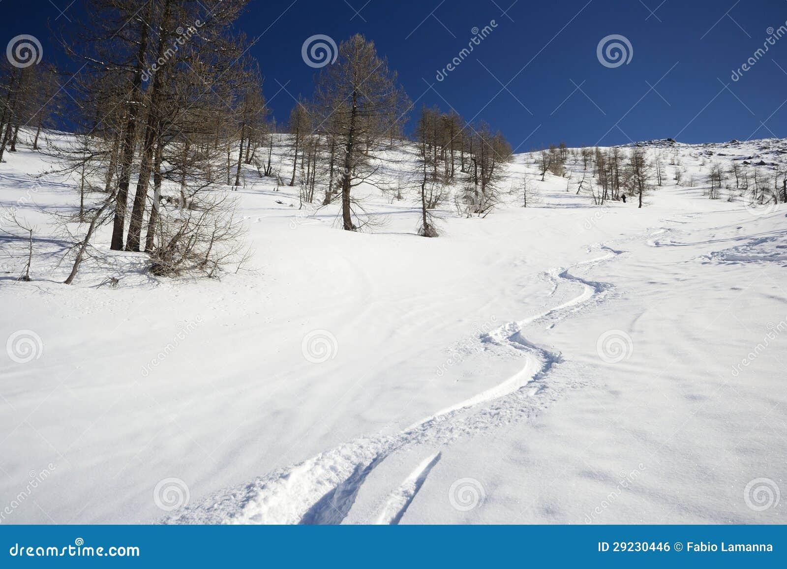 Download Visita do esqui foto de stock. Imagem de piedmont, liberdade - 29230446