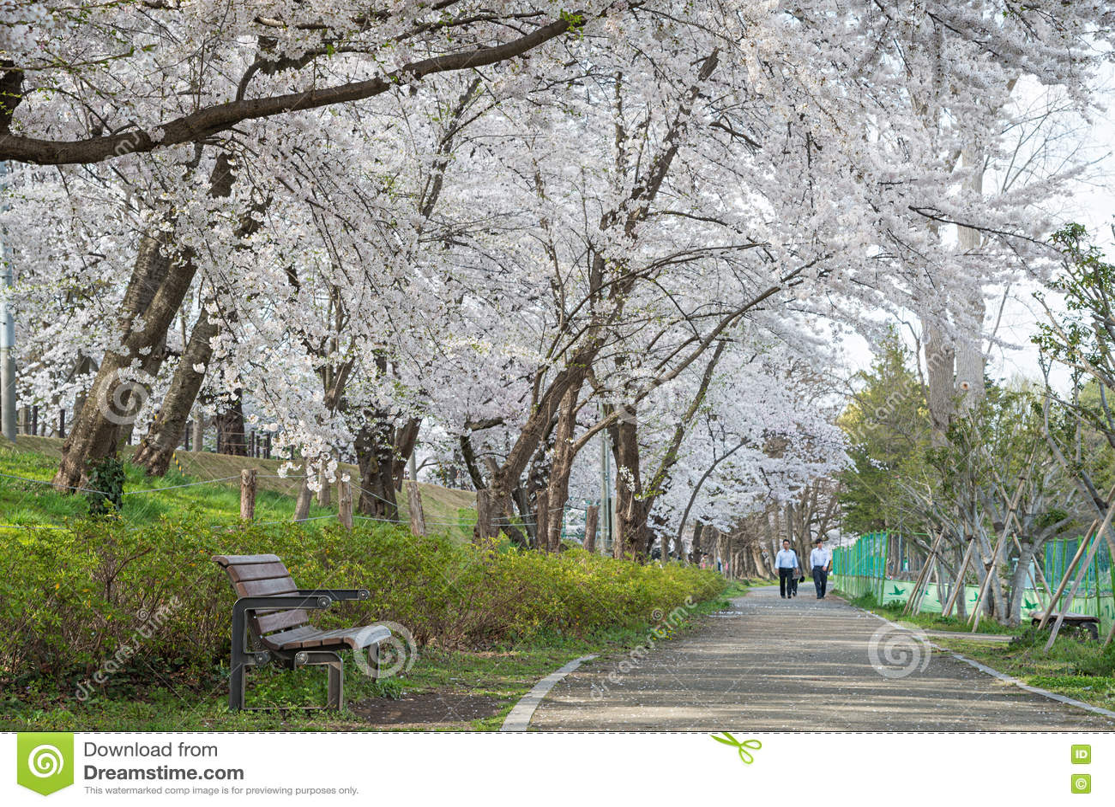 Download Visitors In Kajo Castle Park (Yamagata Castle Site Park). Editorial Stock Photo - Image of destination, landmark: 76231878