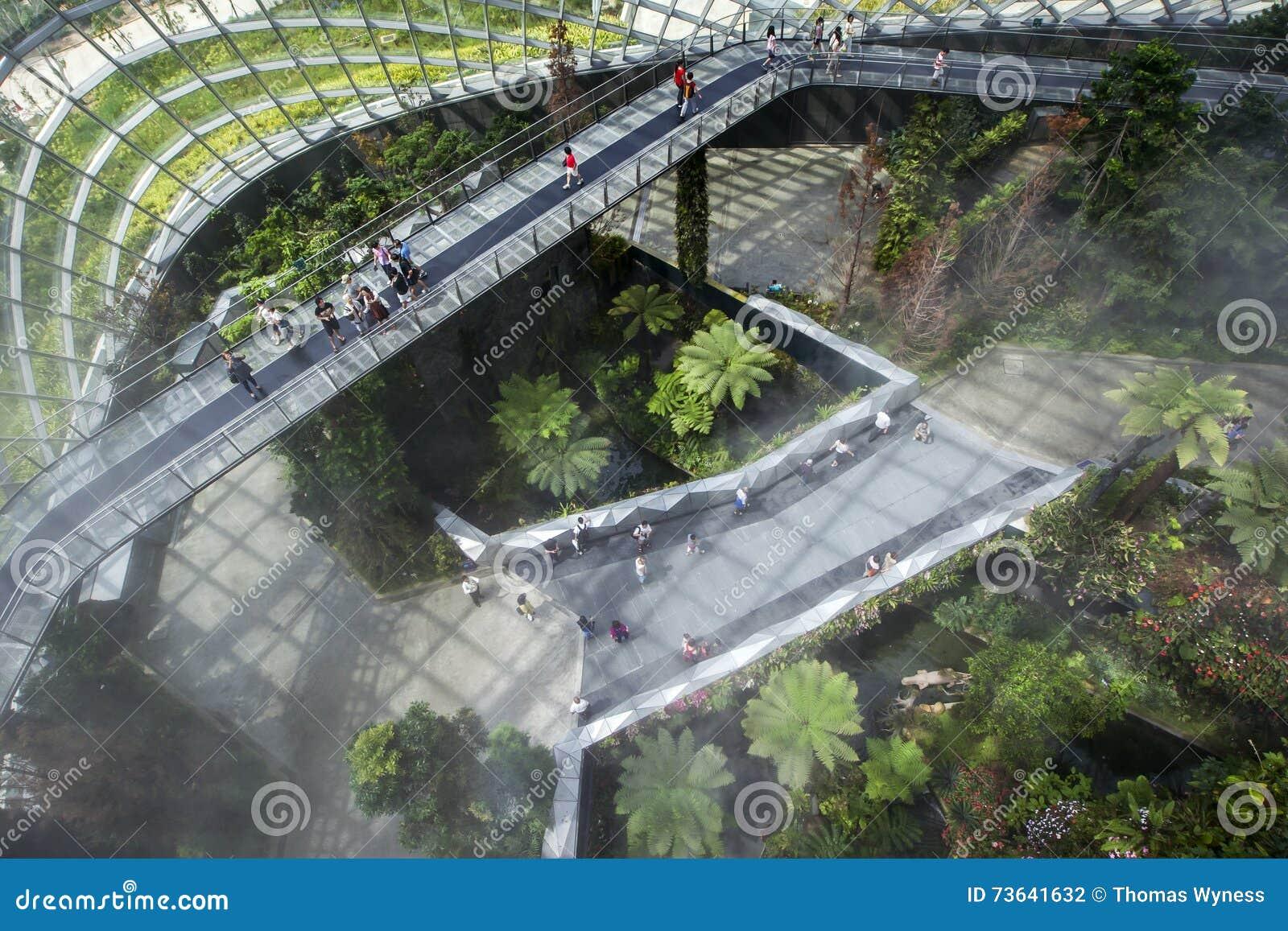 Sky Garden Walk: Visitors Walk Across The Sky Bridge In The Rainforest