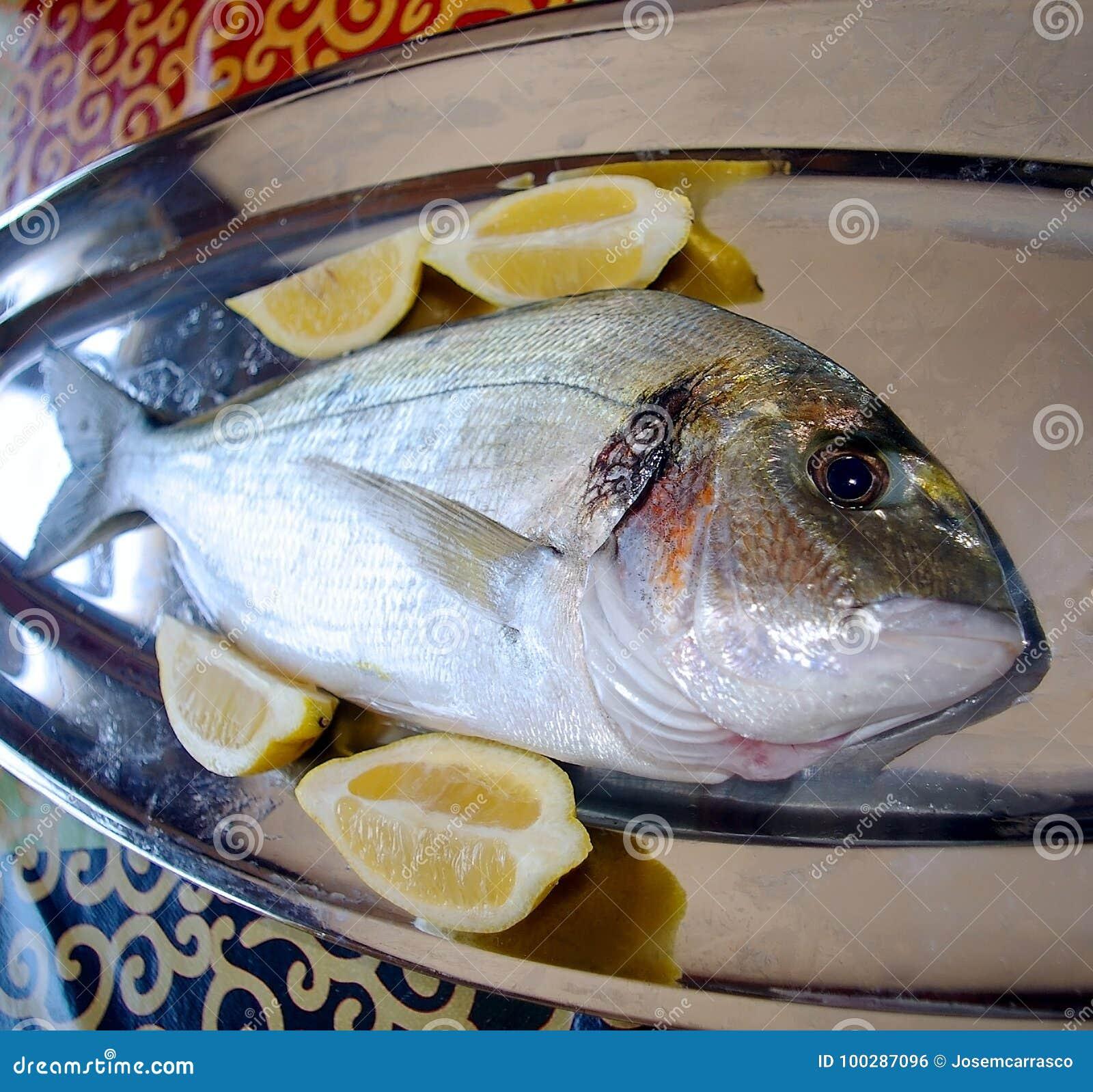 Vissen verse geroepen dorada in het Spaans