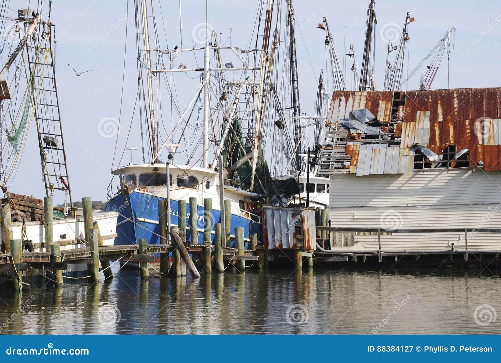 Vissersboten bij de haven in Amelia Island, Florida worden vastgelegd dat
