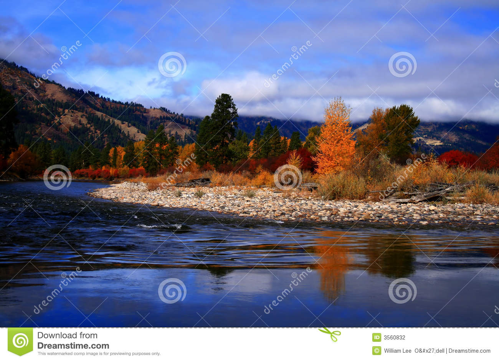 Vista 2 di autunno del Alder Creek